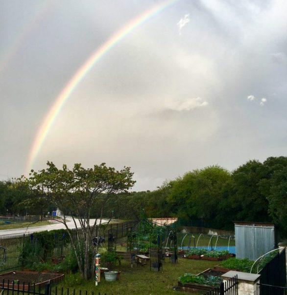 Westbank Community Garden w Rainbow