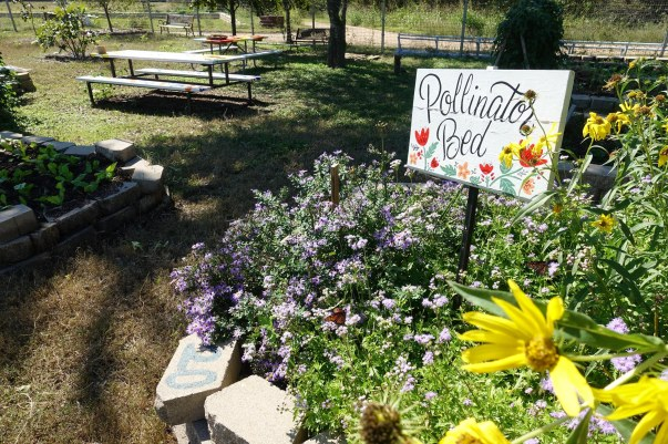 GGG pollinator bed sign on right